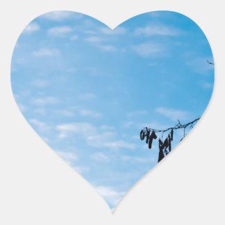 Minimalism photograph heart sticker