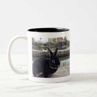 MiniRex rabbit Daddy Edward mug