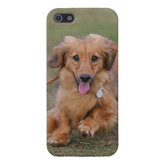 Miniture Dachshund Running iPhone SE/5/5s Case