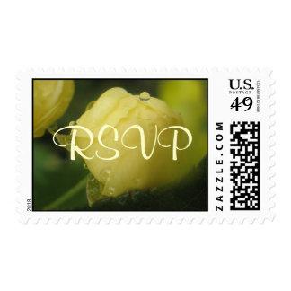 Miniture Rosebud Postage
