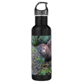 Mink Photo Closeup Stainless Steel Water Bottle