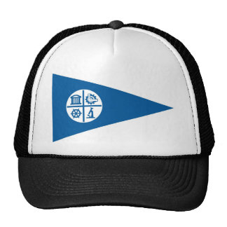 minneapolis city flag united states america hats