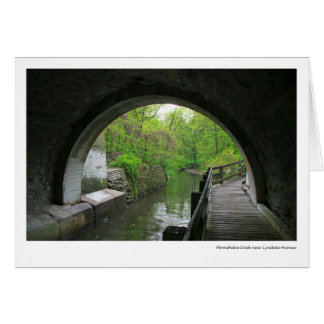 Minnehaha Creek near Lyndale Avenue Greeting Card