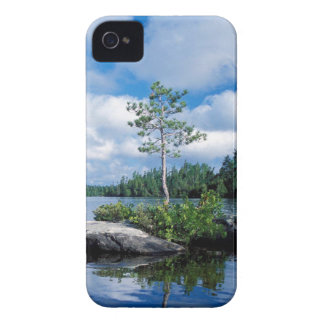 Minnesota Boundary Waters iPhone 4 Case-Mate Cases