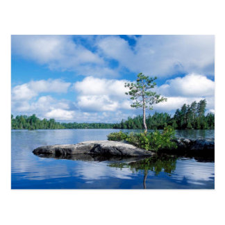 Minnesota Boundary Waters Postcard