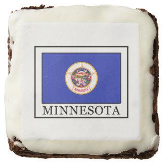 Minnesota Brownie