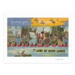 Minnesota (Ducks) - Large Letter Scenes Postcard