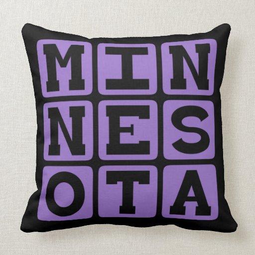 Minnesota, Estados Unidos Almohada