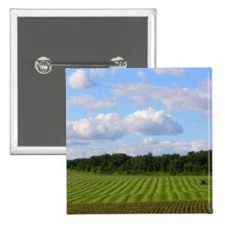 Minnesota farm beautiful summer day photography pinback button