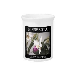 Minnesota Lady Slipper Pitcher