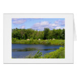 Minnesota lake rock family from Rockville MN Greeting Cards