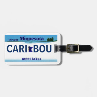 Minnesota License Plate Luggage Tag 2-Sided!