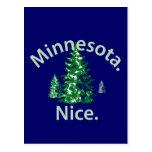Minnesota Niza.  ¡Período! Postal