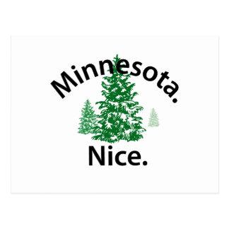 Minnesota Niza.  ¡Período! (texto negro) Postal