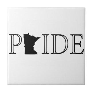 Minnesota Pride Tile