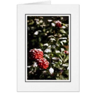 Minnesota Snow Flowers Card