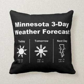 Minnesota Weather Forecast Pillow