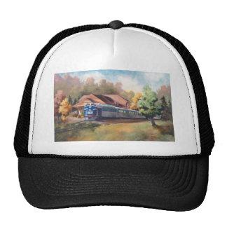 Minnesota Zephyr Hat
