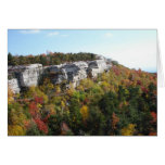 Minnewaska State Park Cards