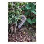 Minnie in the garden greeting card