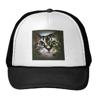 Minnie Moocher Trucker Hats