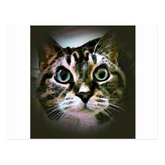 Minnie Moocher Postcard
