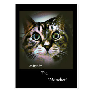 Minnie The Moocher Postcard