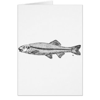 Minnow Stationery Note Card
