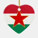 Minoría húngara yugoslava de Sfr, bandera étnica Ornato