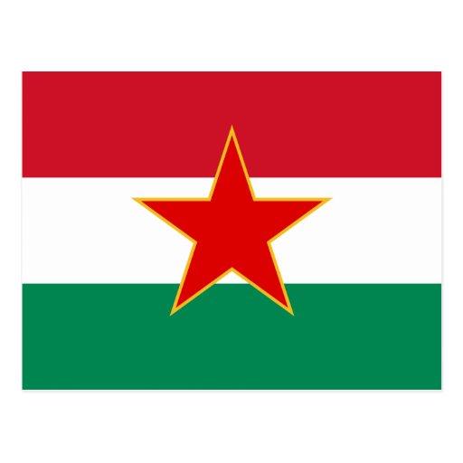 Minoría húngara yugoslava de Sfr, bandera étnica Tarjetas Postales