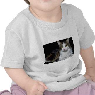 Minou Tshirts