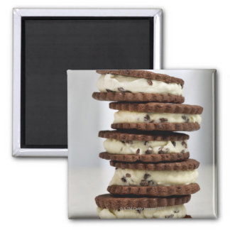 mint cocoa nib ice cream with chocolate cookies 2 inch square magnet