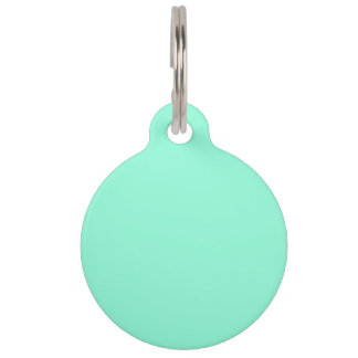 Mint Color Green Light Sea Turquoise Minty Fresh Pet Nametag