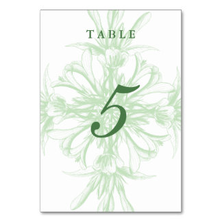 Mint Green and White Floral Damask Table Cards