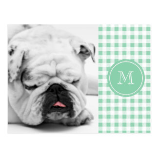 Mint Green and White Gingham, Your Monogram Postcard