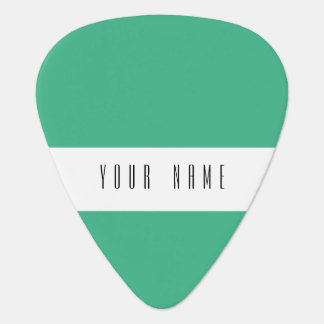 Mint Green High End Colored Guitar Pick