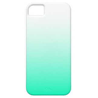 Mint Green Ombre iPhone SE/5/5s Case