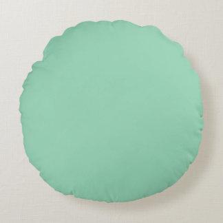 Mint Green Round Pillow