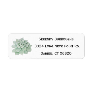 Mint Green Succulent Cactus Watercolor Label