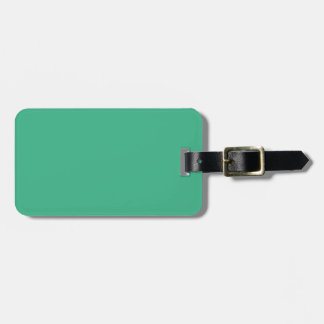 Mint Green Tag For Luggage