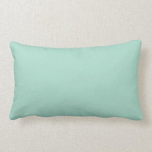 Throw Pillows In Mint Green : Mint Green throw pillow Zazzle