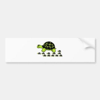 mint green turles bumper sticker