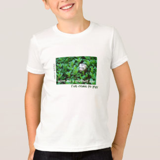 Mint Me a Perfect Day / I've Come to Play T-Shirt