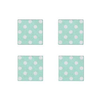 Mint polka dots magnet set stone magnet