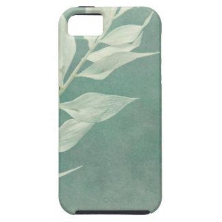 Mint & White iPhone 5 Carcasa