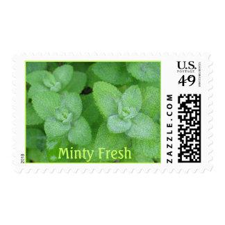Minty Fresh Postage Stamp