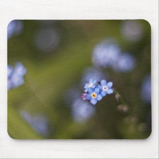 Minúsculo olvídeme no flor mouse pads