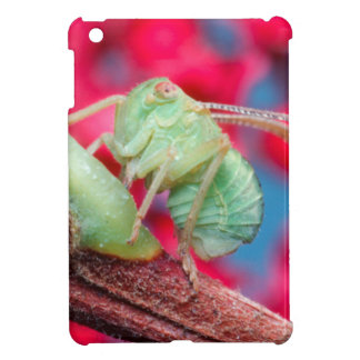 Minute Bug On Branch. Kruger National Park Case For The iPad Mini
