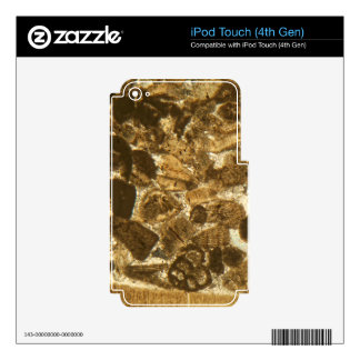 Miocene limestone under the microscope decal for iPod touch 4G