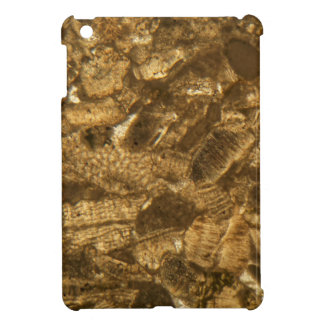 Miocene limestone under the microscope iPad mini covers